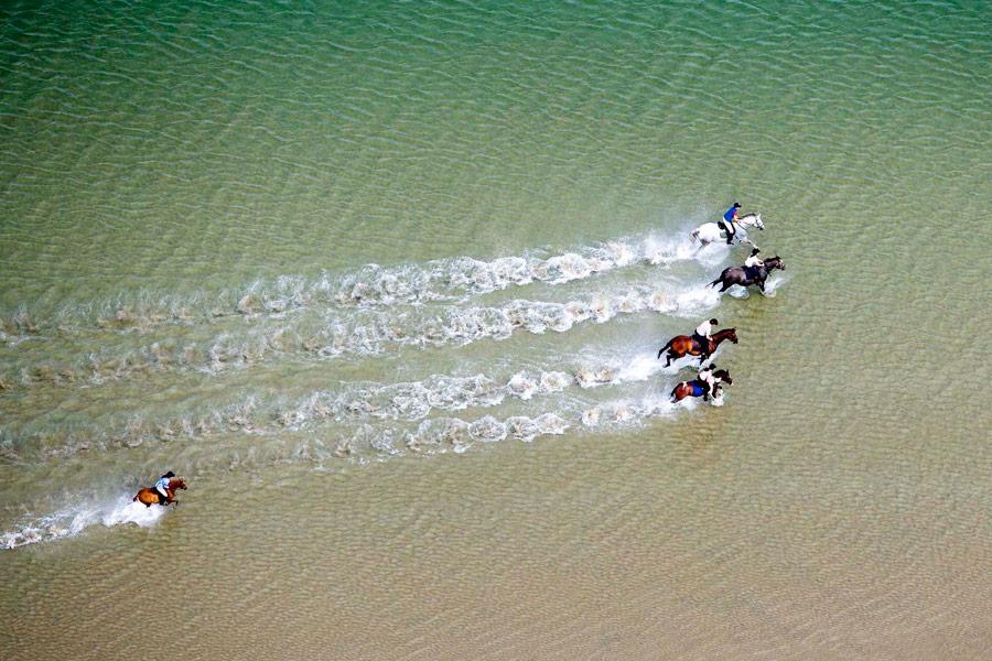 Beach Horseriding